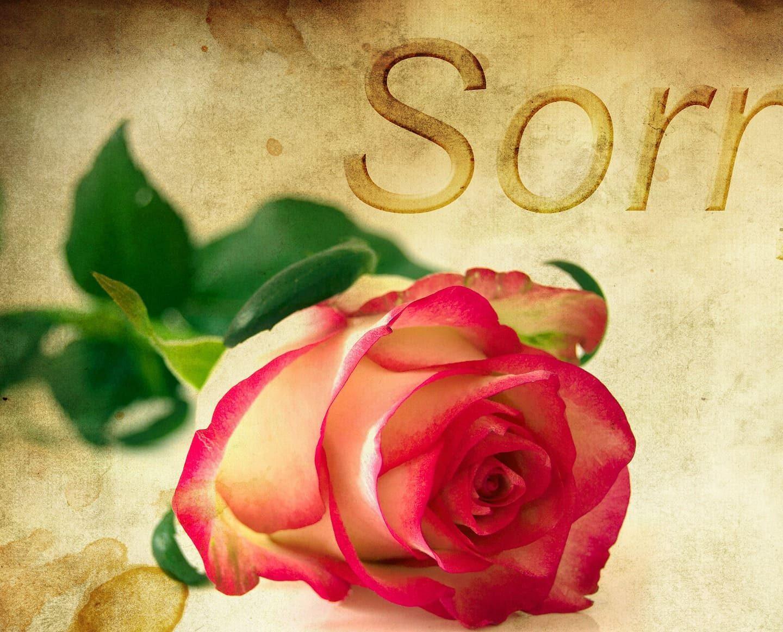 Научете се да прощавате…